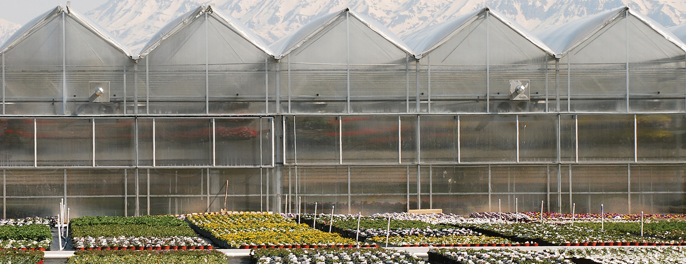 Turn-key-greenhouse-structures